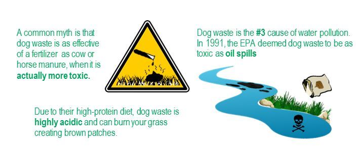 Pet Waste Website Graphic